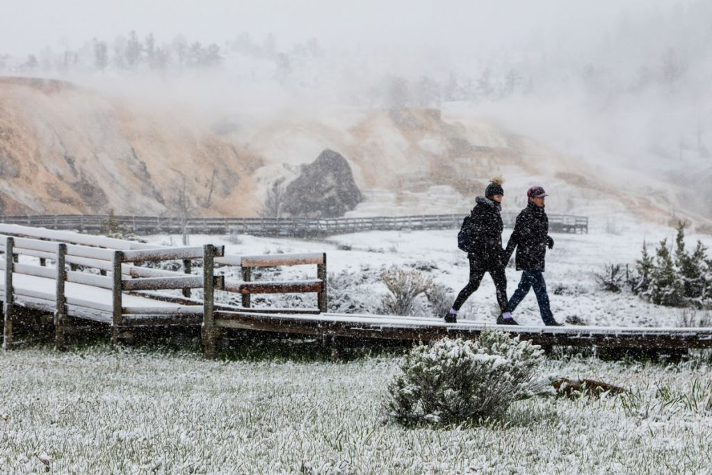 Snowy-spring-day-in-Mammoth-Hot-Springs