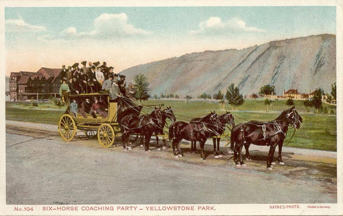 Six Horse Coach