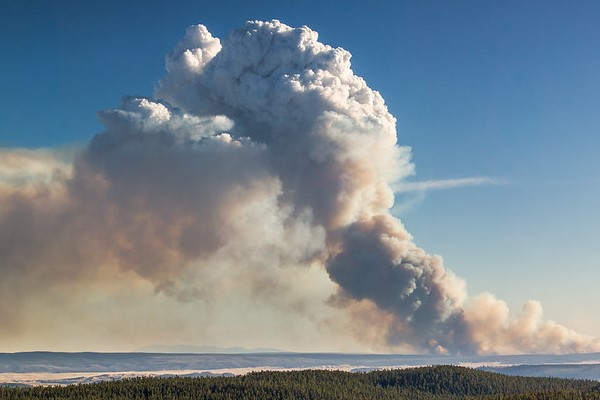 Spruce Fire from Dunraven Pass