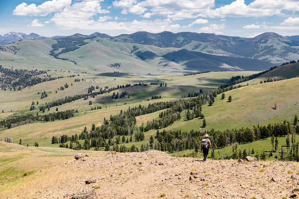 Hiker and Lamar Valley