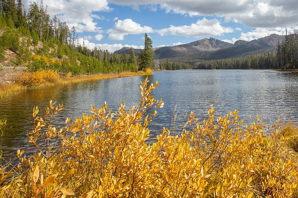 Fall colors at Sylvan Lake