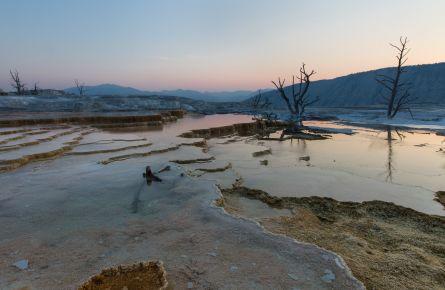 Dawn at Mammoth Hot Springs