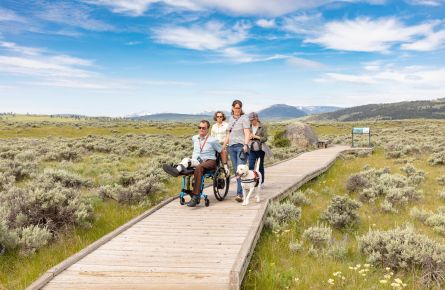 Exploring the Forces of the Northern Range boardwalk